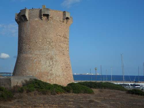 Sa Rapita Tower Stone Tower Mediterranean Oleander