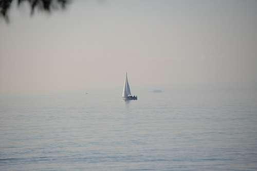 Sail Sailing Lake Water Fog Fog Bank Morning