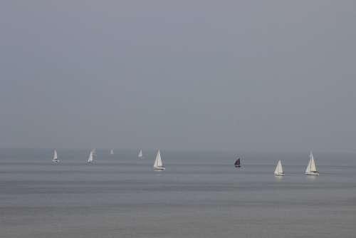 Sailboats Boats Sea Browse