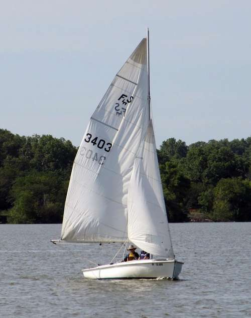 Sailing Sailboat Lake Water Sail Boat Recreation