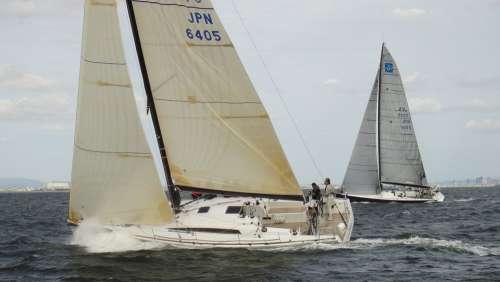 Sailing Yacht Yacht Racing Sea Wind Sail Sky