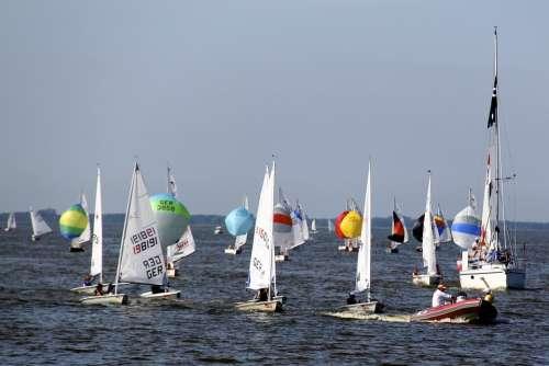 Sailing Boats Sailing Water Summer Ribnitz Ut