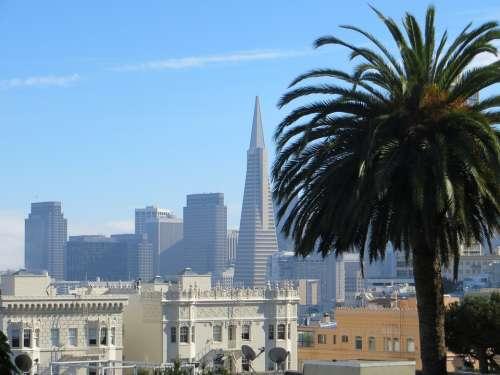 San Francisco California Usa Transamerica Pyramid