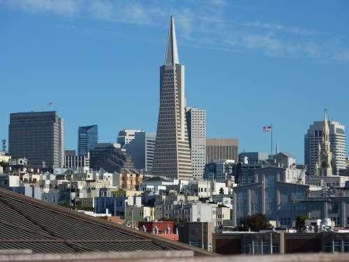 San Francisco California Usa America Skyline