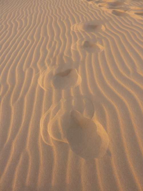 Sand Uruguay Footprints In The Sand Feet Traces