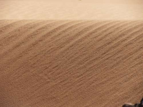Sand Wuese Gone With The Wind Erosion Wind Geology