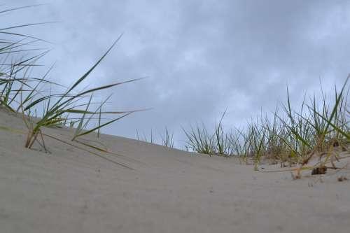 Sand Dunes Beach Sand Nature