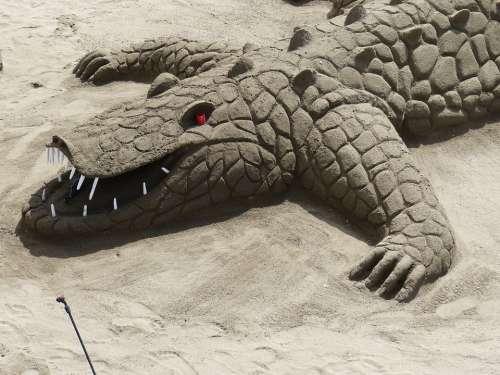 Sand Sculpture Alligator Crocodile Sand Vacations