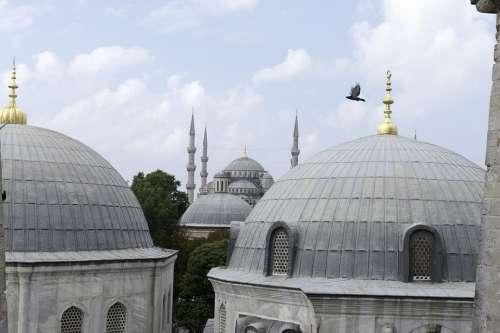 Santa Sofia Istanbul Roofs Domes