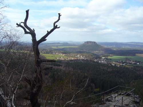 Saxon Switzerland Lily Stone Landscape Nature