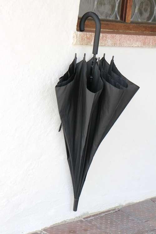 Screen Umbrella Black
