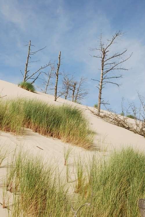 Sea The Sand Dunes Sand Dune The Baltic Sea