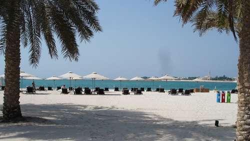 Sea Palm Trees Beach Water White Beach Nature