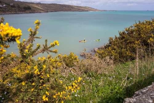 Sea Coast Cornwall Rocky Coast Water Beach Bay