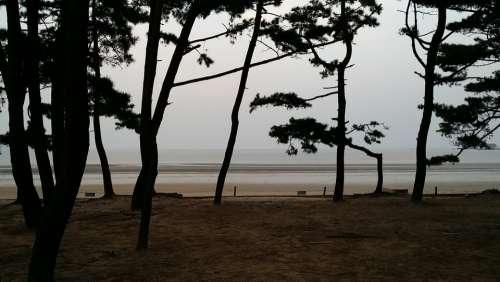 Sea Mongsanpo Bathing Beach Republic Of Korea
