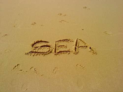 Sea Ocean Beach Sun Sand