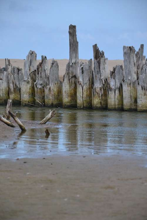 Sea Beach Sand Water The Bars Tree Then