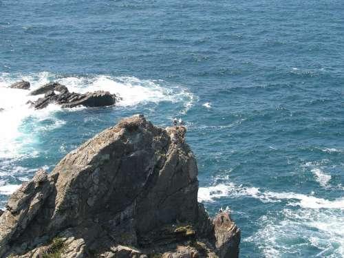 Sea Rocks Water Nature Waves