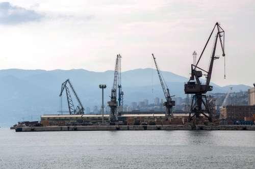 Sea Crane Summer Croatia Istria Porto