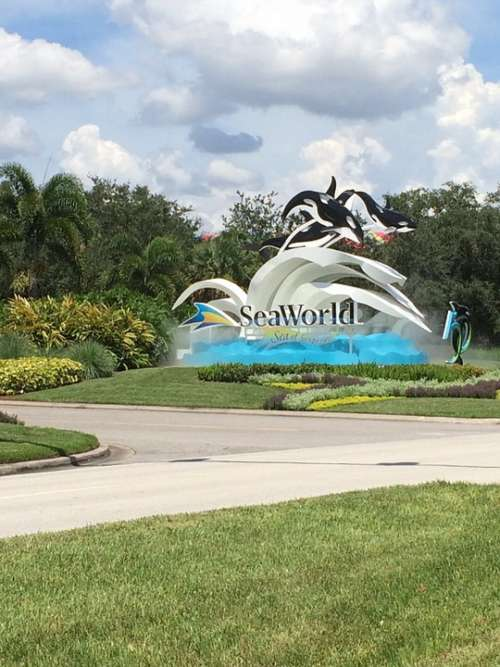 Sea World Entrance Signage Theme Park Florida