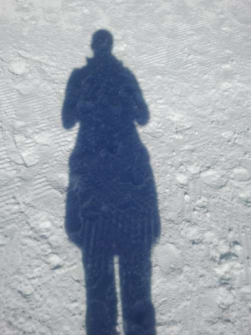Shadow Shadow Play Winter Snow