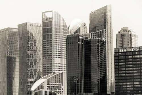 Shanghai Business Skyscrapers