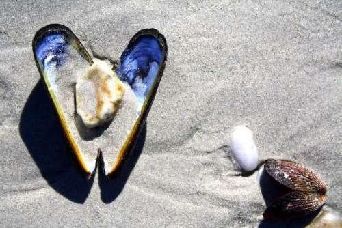 Shell Beach Sand Stones Heart Sea