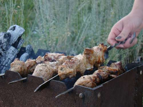 Shish Kebab Mangal Skewers On The Nature Summer