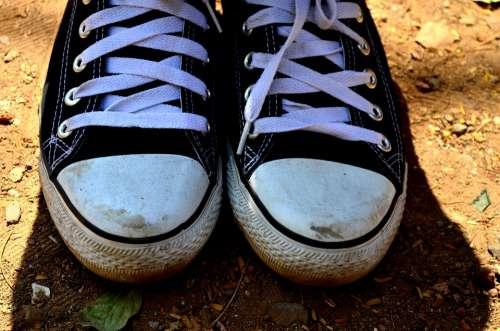 Shoelaces Shoes Sneakers Black Laces Converse