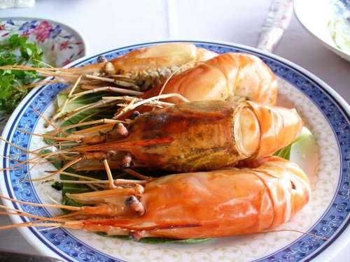 Shrimp Seafood Eat Food Court