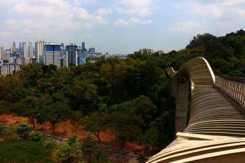 Singapore City Bridge Wood Southern Ridges