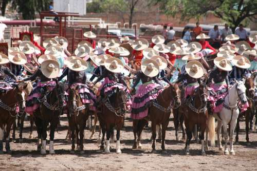 Skirmish Mexico Tradition Charros Horses Canvas