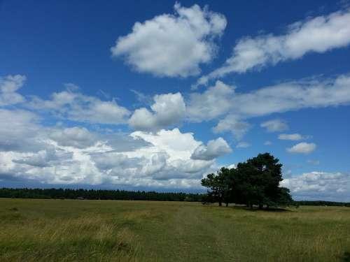 Sky Clouds Heathland Landscape