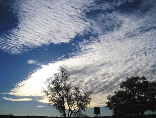 Sky Blue Clouds Mass White Fleecy Dainty Stratus