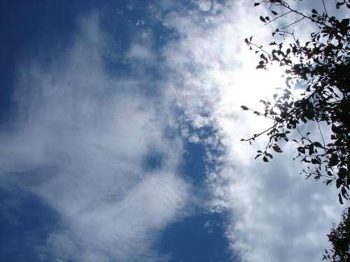 Sky Dramatic Beautiful Dramatic Sky Clouds Light