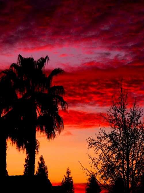 Sky Sunset Colors Pink Orange Purple Warm