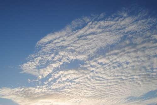 Sky Clouds Cloudy Blue Cloudy Sky White Cloud