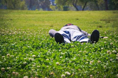 Sleeping Person Male Holiday Vacation Grass