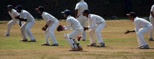 Slips Wicket Keeper Cricket Wicket Keeping