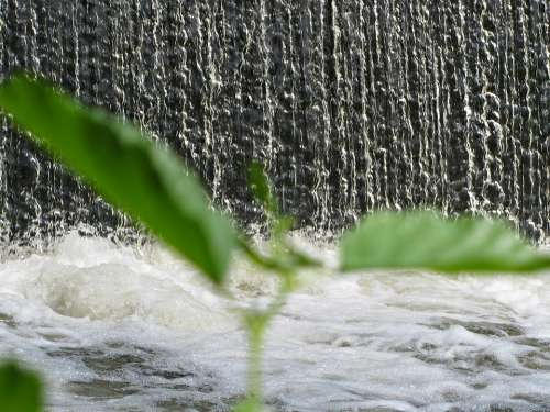 Sluice Waterfall Natural Water Nature Plant Liquid