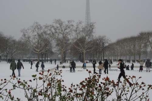 Snow Paris Champs De Mars Eiffel Tower Winter Cold