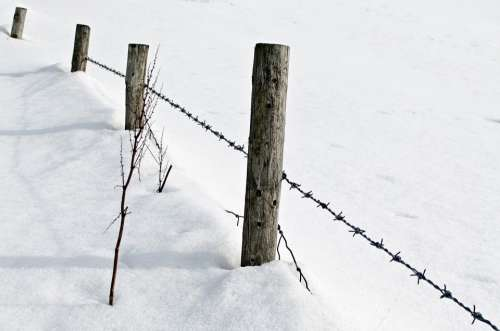 Snow Snowfall White Cold Seasons Background