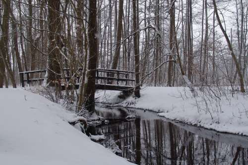 Snow Forest Bridge Snow Landscape