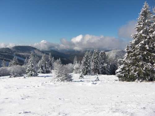 Snow Snow Landscape Black Forest Wintry Feldberg