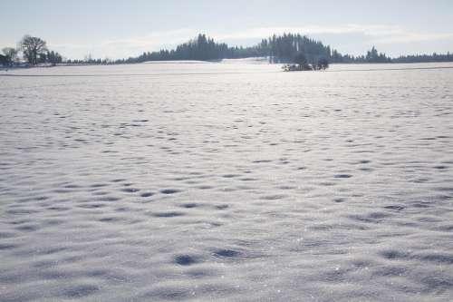 Snow Cold Sparkle Schneeflaeche Crystals White