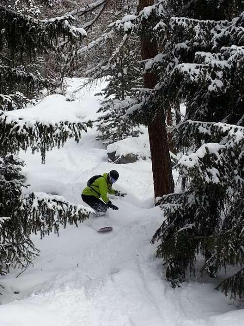 Snowboard Freeride Freeriding Height Mountains