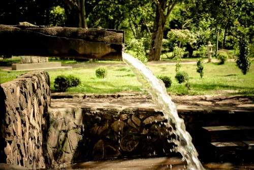 Source Water Landscape Garden Scenario