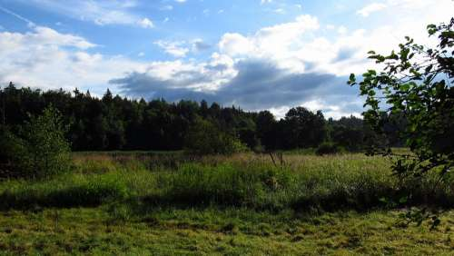 South Bohemian Landscape Nature View Summer Day
