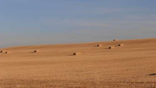 Spain Meseta Hay Field Camino Farmland Farm