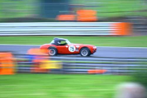 Speed Car Auto Vehicle Automobile Driver